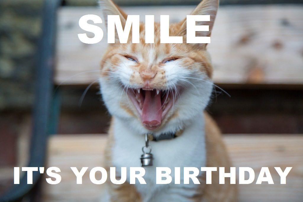 best Birthday Memes wishes