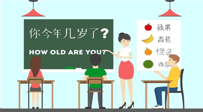 learn Chinese language HSK