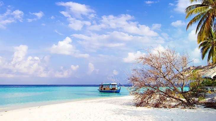 beaches in India, best places to go on luxury tours in India