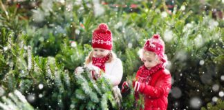 How Buy Best Christmas Trees for Kids