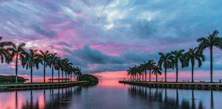 Spots in Miami