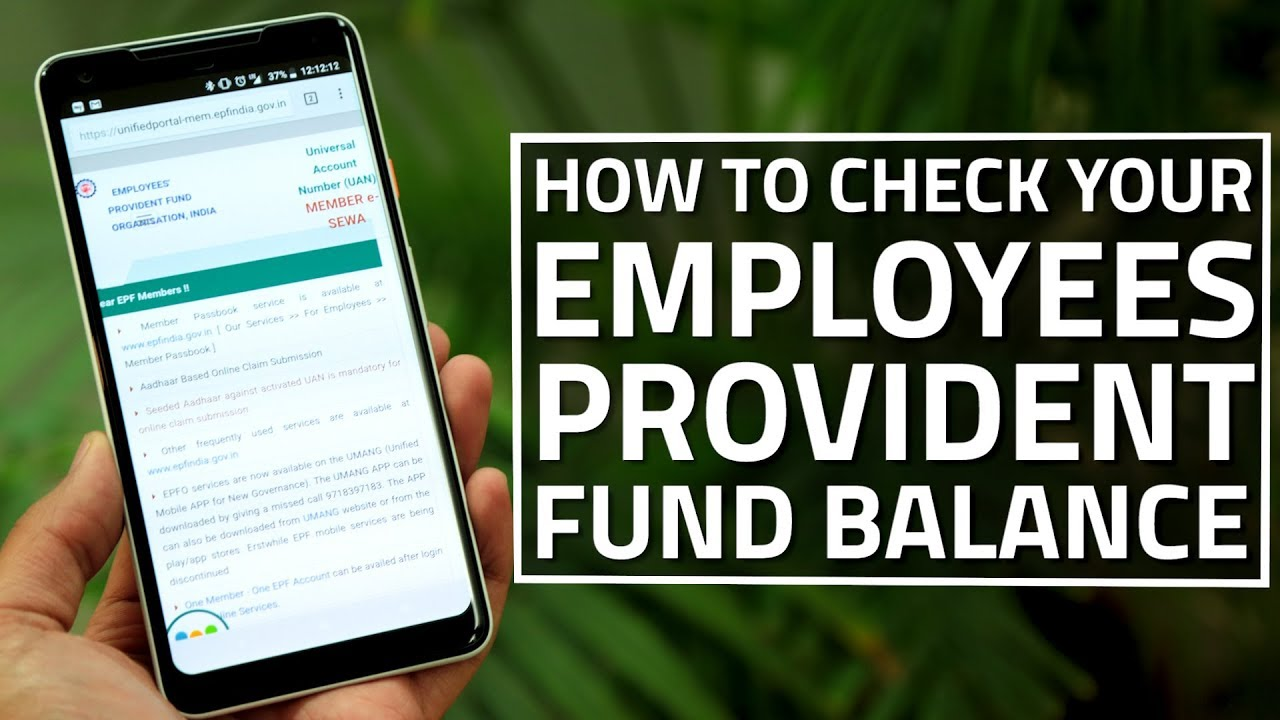 Provident Fund Balance Instantly